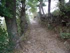 Chemin d'automne - Parc Naturel Régional du Pilat